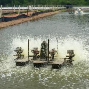 Aquaculture Treatment Products